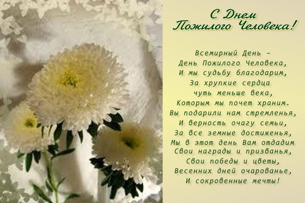 Открытки с нежными цветами или ромашками 78